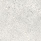 STONE PARADISE light grey matt 59,3 x 59,3